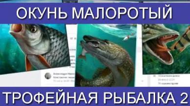 Embedded thumbnail for Ловим Окунь малоротый