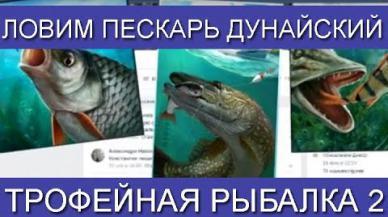 Embedded thumbnail for Ловим Пескарь Дунайский