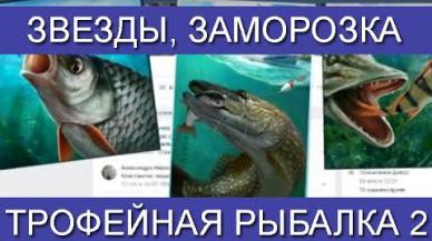 Embedded thumbnail for Трофейная рыбалка 2 Звезды, заморозка